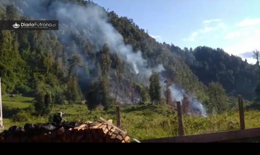 Incendio forestal en sector rural de Futrono